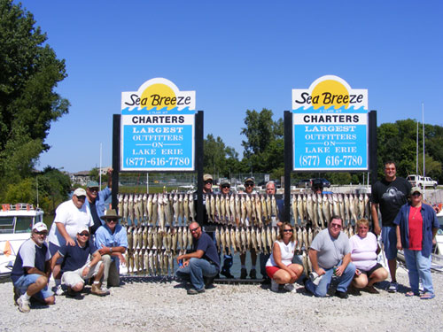 Limits of Walleye - 3 Charters, 3 Limits!!!